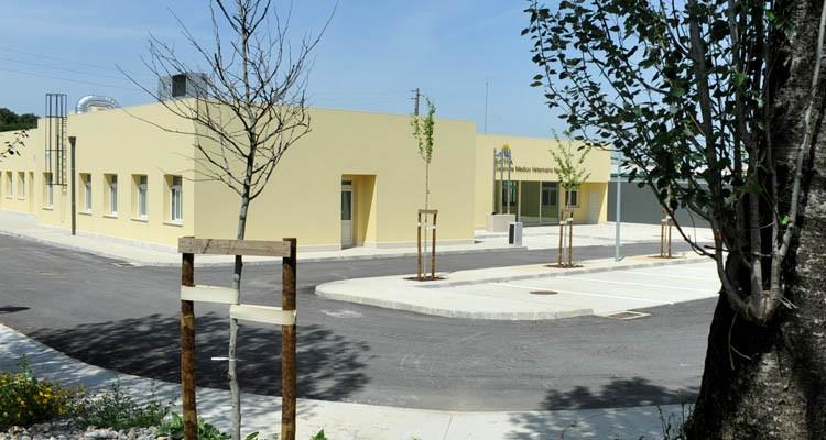 galeria_gabinete_medico_veterinario